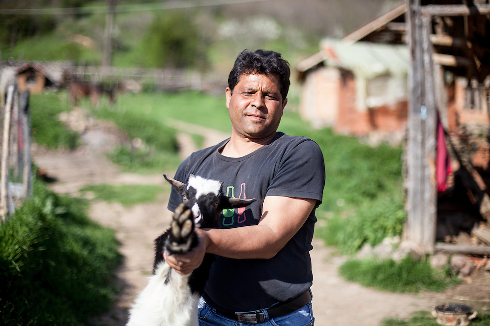 Portrait of a man with his goat at the Roma part in the city of Crnik. Crnik has almost 90% of unemployment so many people have their own animals for producing milk and food in general.
