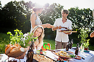 Picnic Table, Friends, Party, Enjoyment, Togetherness, Summer, Barbecue