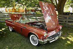 06 August 2016:  1957 Ford Thunderbird Roadster<br /> Owers: John Greuter<br /> <br /> Displayed at the McLean County Antique Automobile Association Car show at David Davis Mansion in Bloomington Illinois
