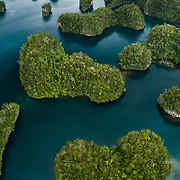The incredible labyrinth of limestone islands within Waigeo's Kabui Bay. Lying on the northern edge of Raja Ampat, this region is home to the world's richest marine life, including 1500 species of fish and 75% of all known coral species. The islands themselves also host a diverse assortment of rainforest flora and fauna, including slipper orchids, endemic marsupials, and birds of paradise.