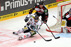 27.02.2015, Lanxess Arena, Köln, GER, DEL, Kölner Haie vs Straubing Tigers, 51. Runde, im Bild Tobis Woerle (Straubing) kommt im Zweikampf mit Daniel Tjaernqvist (Koeln) zu Fall // during Germans DEL Icehockey League 51st round match between Kölner Haie and Straubing Tigers at the Lanxess Arena in Köln, Germany on 2015/02/27. EXPA Pictures © 2015, PhotoCredit: EXPA/ Eibner-Pressefoto/ Weiss<br /> <br /> *****ATTENTION - OUT of GER*****