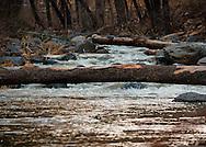 The flowing waters of Oak Creek Canyon - AZ