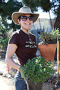 Hollywood, California: Erin Casteel, left black tee, and Charlene Gawa, red sweatshirt, work together in the herb garden at the Fountain Avenue Community Garden (photo: Ann Summa).