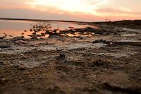 Il complesso produttivo delle saline è situato nel comune italiano di Margherita di Savoia (nome dato dagli abitanti in onore alla regina d'Italia che molto si adoperò nei confronti dei salinieri) nella provincia di Barletta-Andria-Trani in Puglia. Sono le più grandi d'Europa e le seconde nel mondo, in grado di produrre circa la metà del sale marino nazionale (500.000 di tonnellate annue).All'interno dei suoi bacini si sono insediate popolazioni di uccelli migratori e non, divenuti stanziali quali il fenicottero rosa, airone cenerino, garzetta, avocetta, cavaliere d'Italia, chiurlo, chiurlotello, fischione, volpoca..In primo piano riva del bacino con piccole formazione di sale