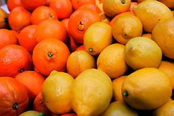 UK ENGLAND LONDON 16MAR07 - Oranges and lemons on sale  at the historic Borough Market in Southwark, London. ..jre/Photo by Jiri Rezac..© Jiri Rezac 2007..Contact: +44 (0) 7050 110 417.Mobile:  +44 (0) 7801 337 683.Office:  +44 (0) 20 8968 9635..Email:   jiri@jirirezac.com.Web:    www.jirirezac.com..© All images Jiri Rezac 2007 - All rights reserved.