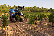 Mechanical harvesting machine harvesting grapes at Chateau de Berne, close to Lorgues, Provence, France.