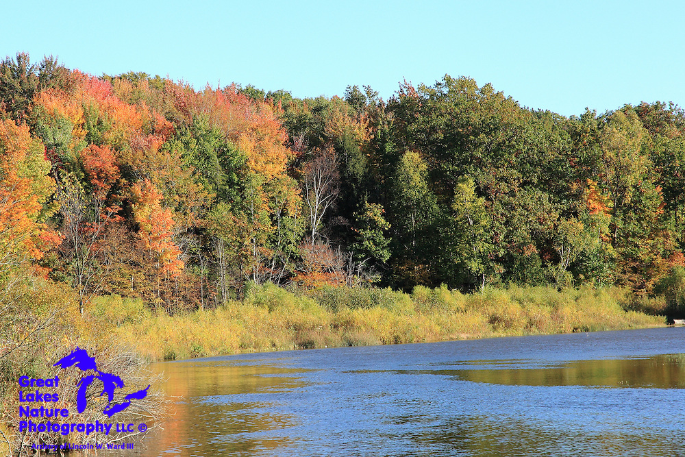 Another beautiful view of the Big Manistee River near Brethren, Michigan.