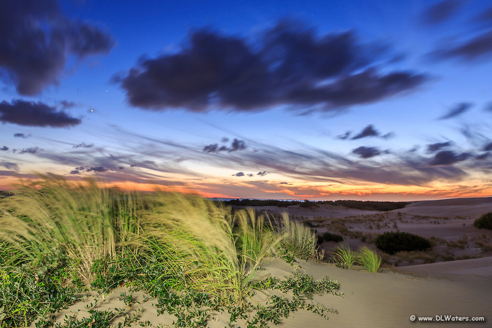 Windy twilight at Jockey's Ridge. I used a flashlight to light up the sea oats and sand dunes in the foreground.