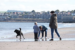 A dog has fun in the sea at Portobello Beach in Edinburgh during a sunny first day of Autumn.<br /> <br /> Edinburgh Weather Pictures, Thursday 22nd September 2016<br /> <br /> (c) Alex Todd | Edinburgh Elite media