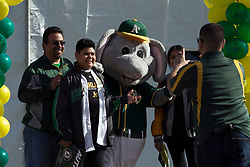 A's mascot Stomper poses for pictures with fans during Oakland Athletics FanFest at Jack London Square on Saturday, Jan. 27, 2018 in Oakland, Calif. (D. Ross Cameron/SF Chronicle)