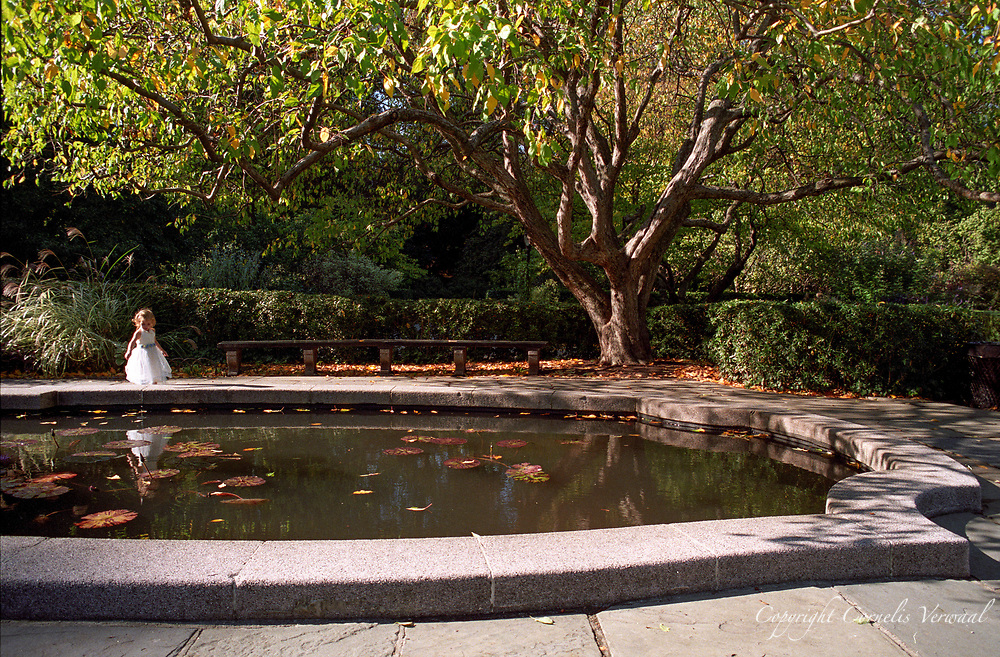 The Secret Garden in the Conservatory Garden