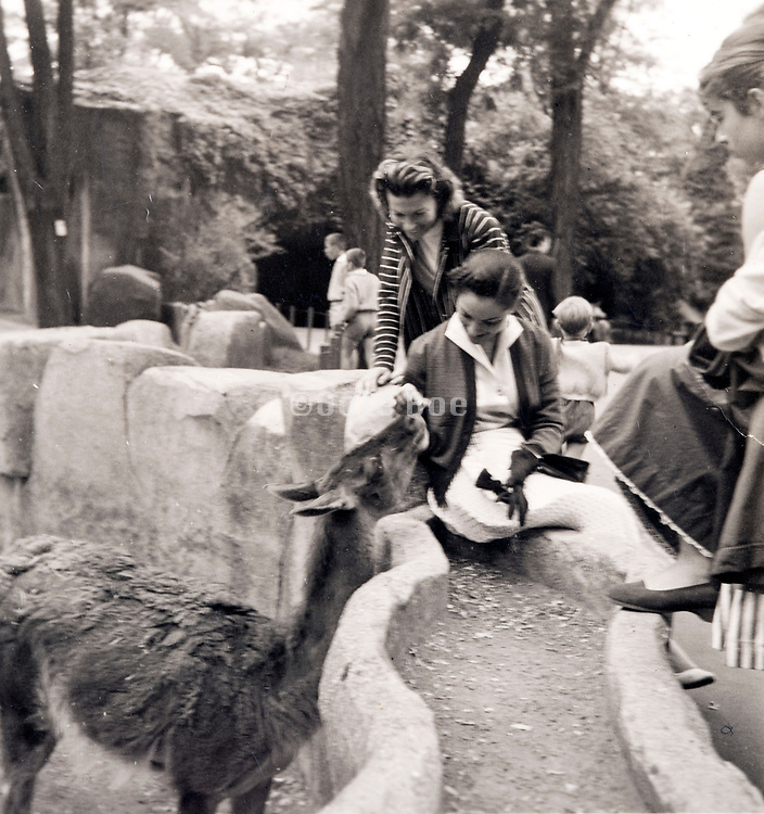 Paris Zoo ca 1960s with people and animals