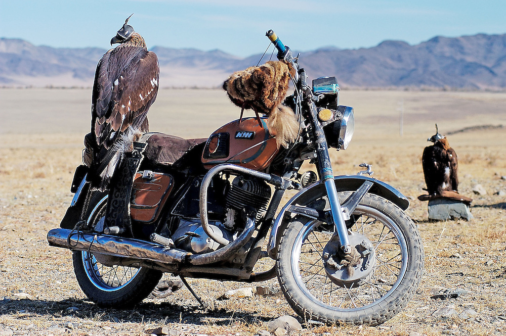 Hooded golden eagles rest on a Russian motorcycle at the  annual Eagle Hunting Festival which celebrates Kazakh culture, Bayan Olgi, Mongolia, Oct 6, 2003.  Kazakhs have hunted with eagles for centuries.  The Eagle Hunting Festival has revived Kazakh culture which was surpressed under Soviet rule.