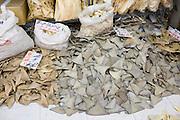 Sharks fins on sale in shop in Wing Lok Street, Sheung Wan, Hong Kong, China