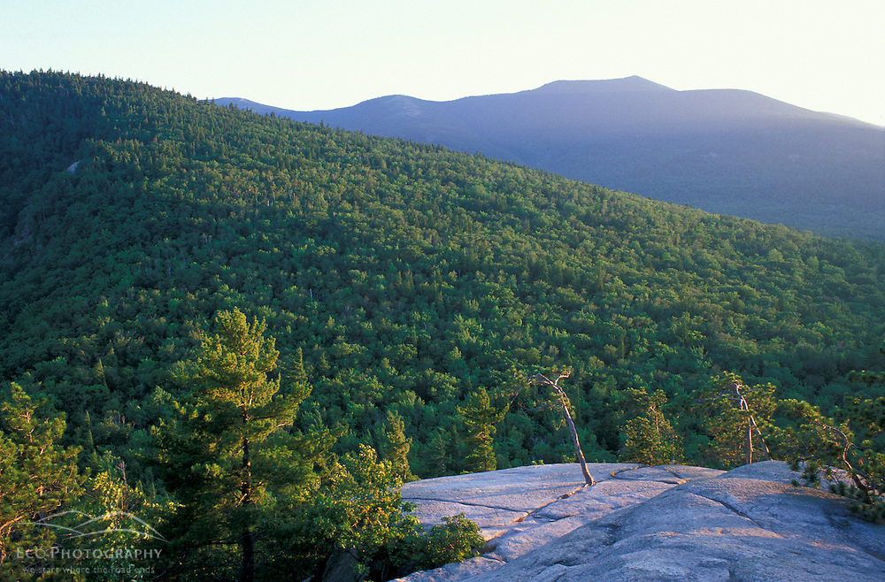 The view of North Moat Mountain from Cathedral Ledge in Echo Lake State Park.  White Mountains. North Conway, NH