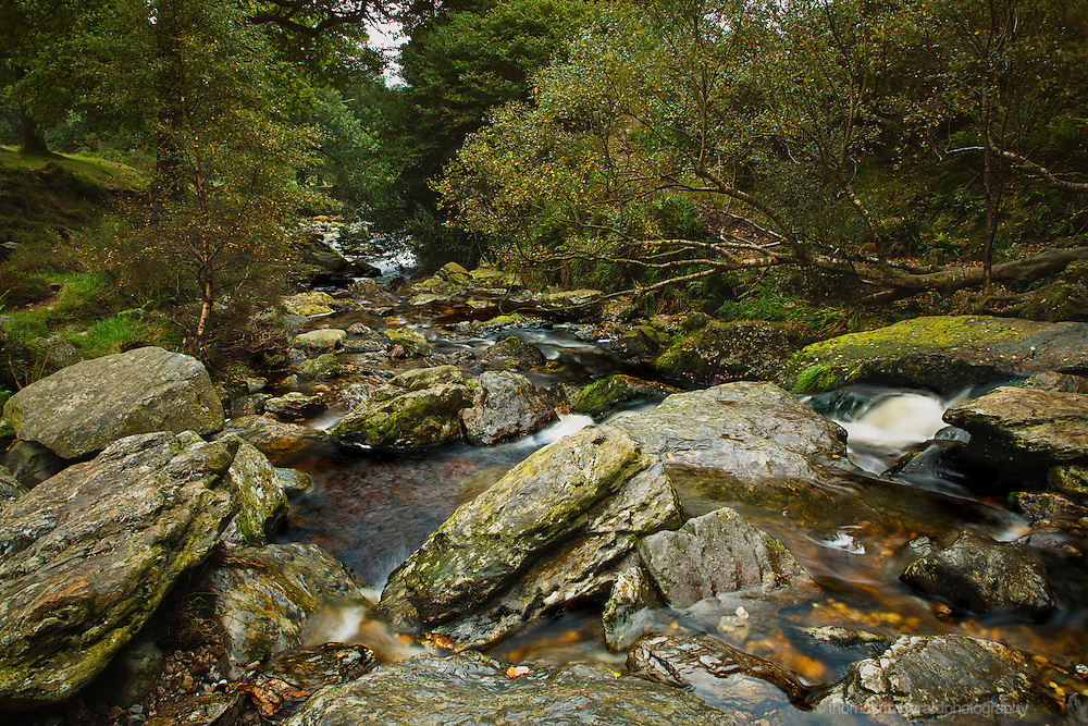 A river flows over rocks in this mountain forest stream in the mountain park around the Powerscourt Waterfall in the Wicklow Mountains