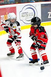 02.01.2016, Ice Rink, Znojmo, CZE, EBEL, HC Orli Znojmo vs Dornbirner Eishockey Club, 39. Runde, im Bild v.l. // during the Erste Bank Icehockey League 39nd round match between HC Orli Znojmo and Dornbirner Eishockey Club at the Ice Rink in Znojmo, Czech Republic on 2016/01/02. EXPA Pictures © 2016, PhotoCredit: EXPA/ Rostislav Pfeffer