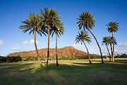 Kapiolani Park, Diamond Head, Waikiki, Honolulu, Oahu, Hawaii