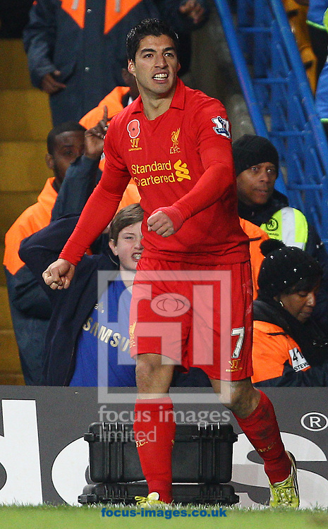 Picture by Paul Terry/Focus Images Ltd +44 7545 642257.11/11/2012.Luis Suarez of Liverpool celebrates after scoring to make it 1-1 during the Barclays Premier League match at Stamford Bridge, London.