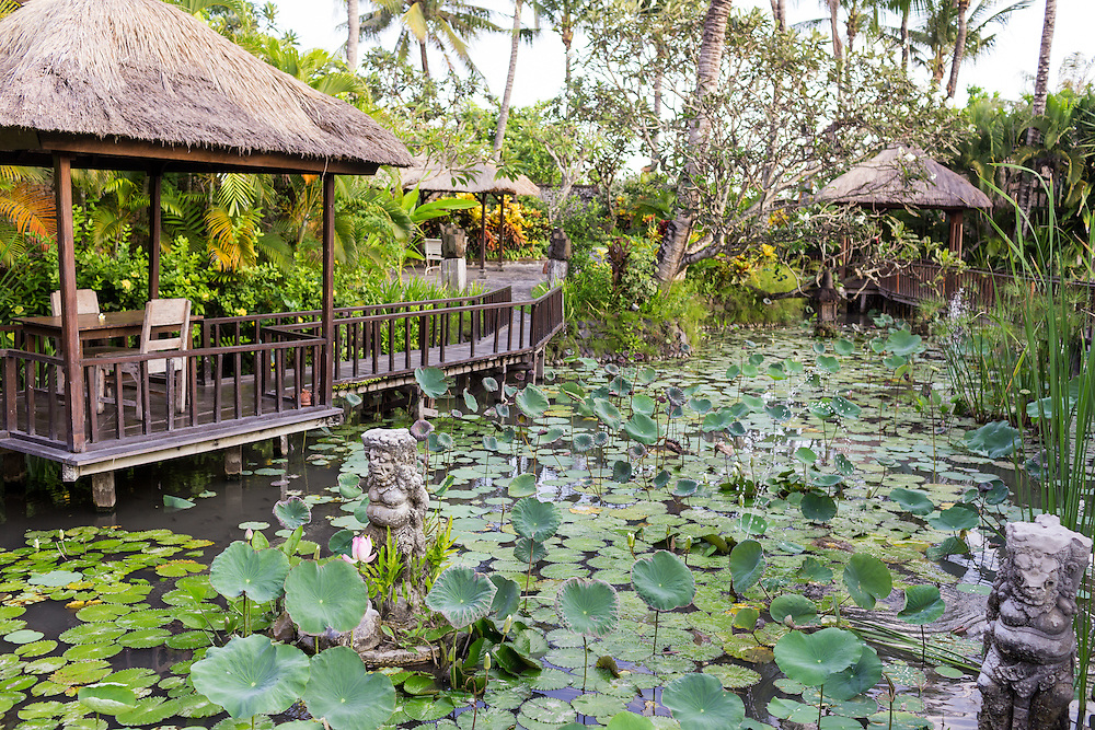 Lotus Pond surrounding Puri Le Mayeur Suite.
