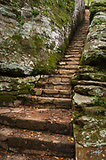 Stone stairway in cleft of cliff. Bell Smith Springs, Shawnee National Forest Illinois