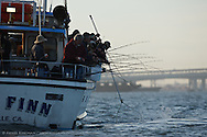 New Huck Finn, party boat fishing for California halibut in San Francisco Bay, Captain Jay Yokomizo