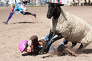 The kids got to ride a sheep just like the big guys ride bulls. Only thing is that they were given a two dollar bill and a hat for the opportunity to eat dirt. Missoula Photographer, Missoula Photographers, Montana Pictures, Montana Photos, Photos of Montana