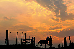 Gaúcho conduz seu cavalo ao pôr-do-sol  FOTO: Jefferson Bernardes/Preview.com
