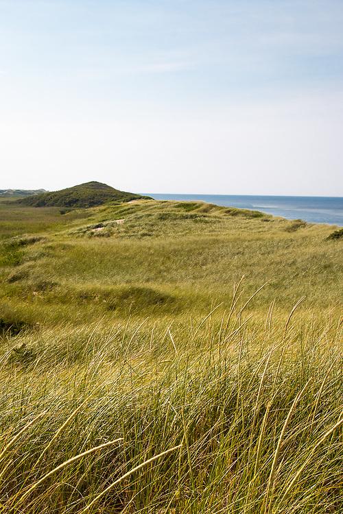 Cape Cod Beach Dunes