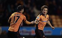 Fotball<br /> England<br /> Foto: Fotosports/Digitalsport<br /> NORWAY ONLY<br /> <br /> Wolverhampton Wanderers v Sunderland , Premier League 27/11/2010<br /> Stephen Hunt of Wolves celebrates scoring the equaliser with Matt Jarvis of Wolves 2-2
