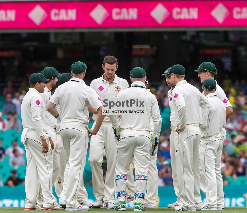 3rd Test Match 2015-16 Day 1, Australia v West Indies, Sydney Cricket Ground; 3 January 2016<br /> Australian Josh Hazlewood celebrates taking the wicket of West Indian Shai Hope caught behind  by Australian Peter Nevill (WK)