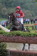 UP IN THE AIR ridden by Paul Tapner (Australia) at Bramham International Horse Trials 2016 at  at Bramham Park, Bramham, United Kingdom on 11 June 2016. Photo by Mark P Doherty.