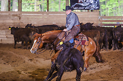 May 21, 2017 - Minshall Farm Cutting 4, held at Minshall Farms, Hillsburgh Ontario. The event was put on by the Ontario Cutting Horse Association. Riding in the Non-Pro Class is John Koop on Head Cat owned by the rider.