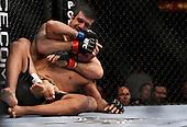 UFC 109 Fights