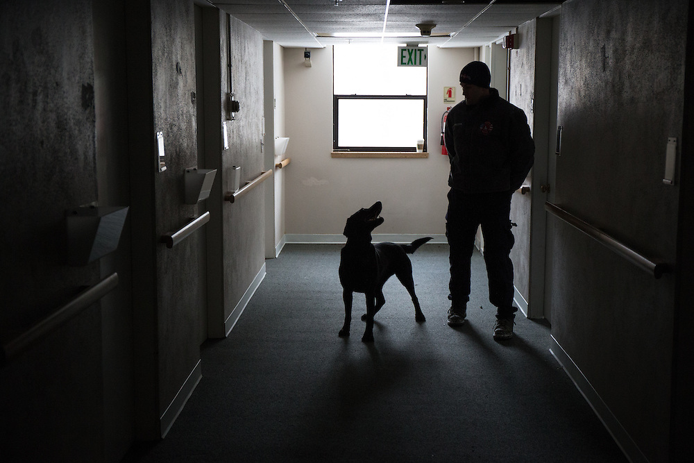 "Jason Paulson with the Coeur d'Alene Fire Department K-9 team shares a glance with Walter, a black lab working toward his FEMA certification, Friday morning during a training session on the third floor of an abandoned building. As part of their training, dogs are required to locate ""victims"" who are hidden throughout the four-story building using only their sense of smell."
