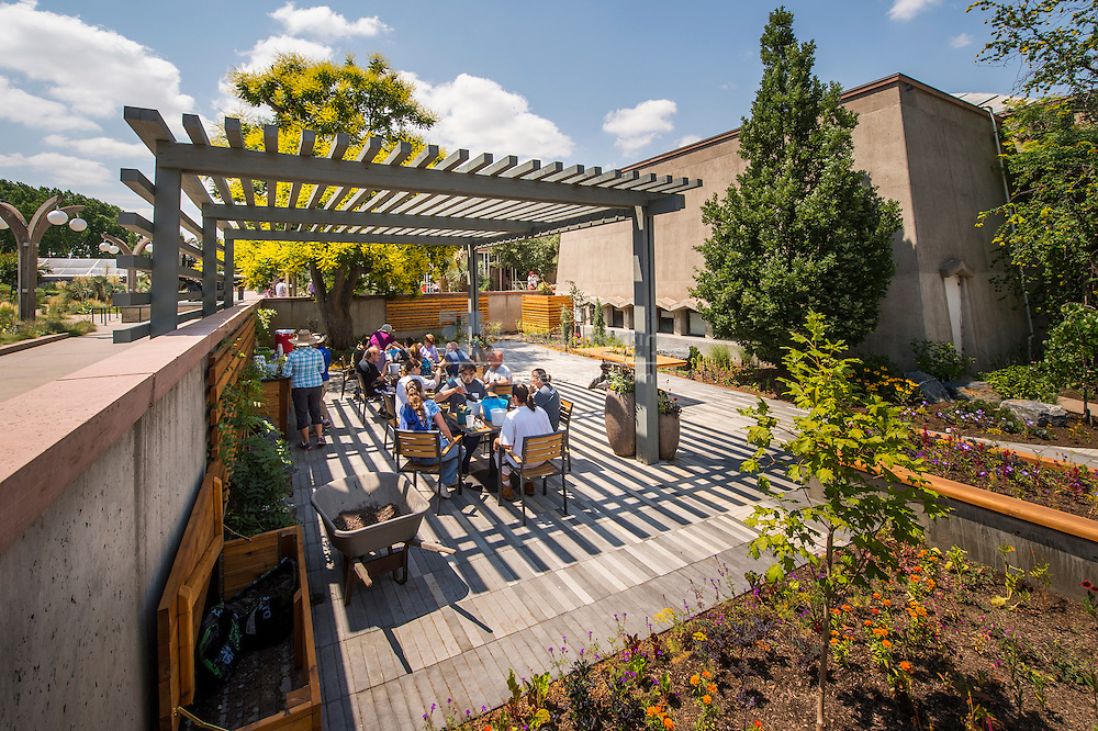 horticulture therapy sensory garden