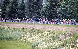 11.07.2019, Kitzbühel, AUT, Ö-Tour, Österreich Radrundfahrt, 5. Etappe, von Radstadt nach Fuscher Törl (103,5 km), im Bild Peloton // Peloton during 5th stage from Bruck an der Glocknerstraße to Kitzbühel (161,9 km) of the 2019 Tour of Austria. Kitzbühel, Austria on 2019/07/11. EXPA Pictures © 2019, PhotoCredit: EXPA/ JFK