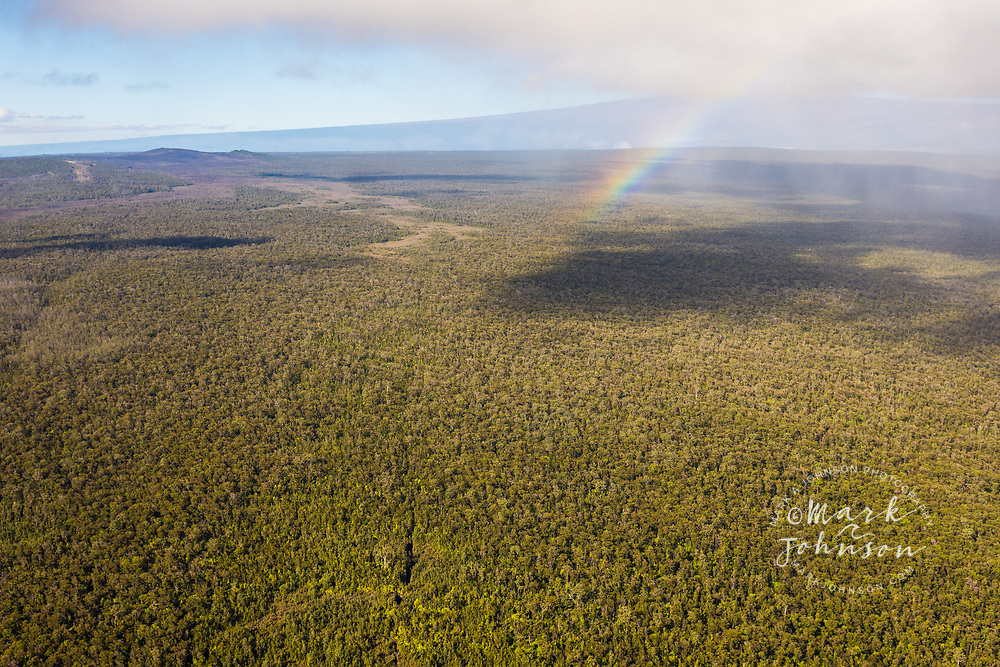 Aerial photo of a rainbow over the Puna Forest Reserve, Mauna Loa in the background, Puna, Big Island, Hawaii