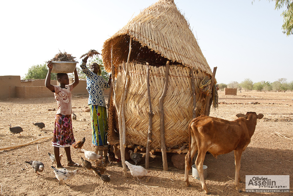 A woman pulls sorghum from a grain silo outside her home in the village of Weotenga, Plateau-Centre region, Burkina Faso on Wednesday March 28, 2012.