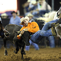 Clovis Crave of Lebanon, Pennsylvania steer wrestles during the 129th performance of the PRCA Silver Spurs Rodeo at the Silver Spurs Arena   on Friday, June 1, 2012 in Kissimmee, Florida. (AP Photo/Alex Menendez) Silver Spurs rodeo action in Kissimee, Florida. PRCA rodeo event in Florida. The 129th annual running of the cowboy event.