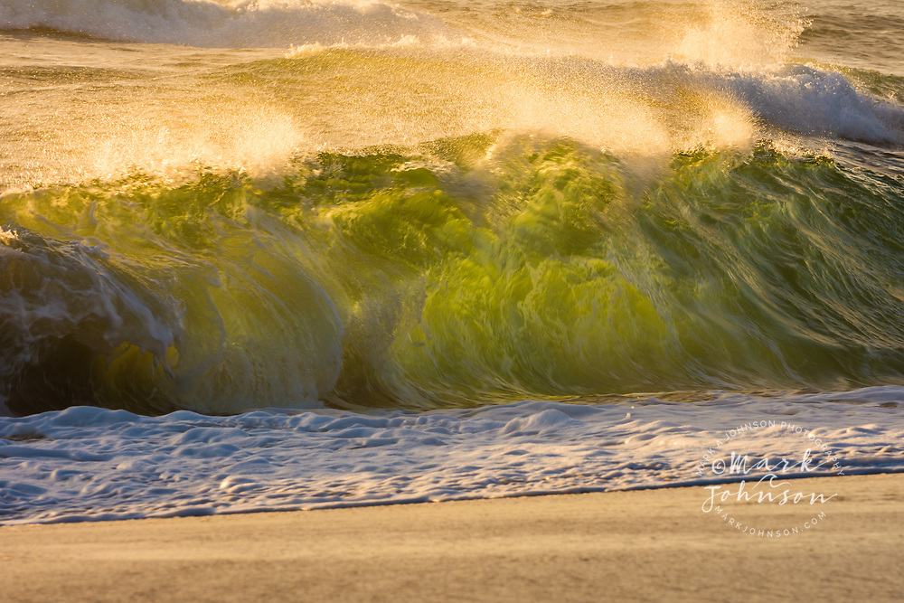 Wave breaking in the shorebreak of Shelly Beach, Caloundra, Sunshine Coast, Queensland, Australia