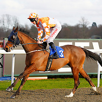 Galiotto and George Baker winning the 2.30 race