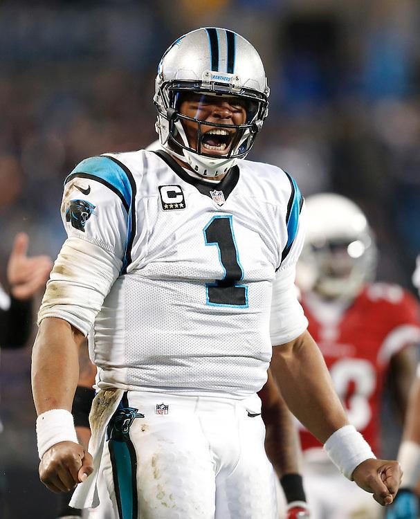 CHARLOTTE, NC - JAN 24:  Quarterback Cam Newton #1 of the Carolina Panthers celebrates during the NFC Championship game against the Arizona Cardinals at Bank of America Stadium on January 24, 2016 in Charlotte, North Carolina.