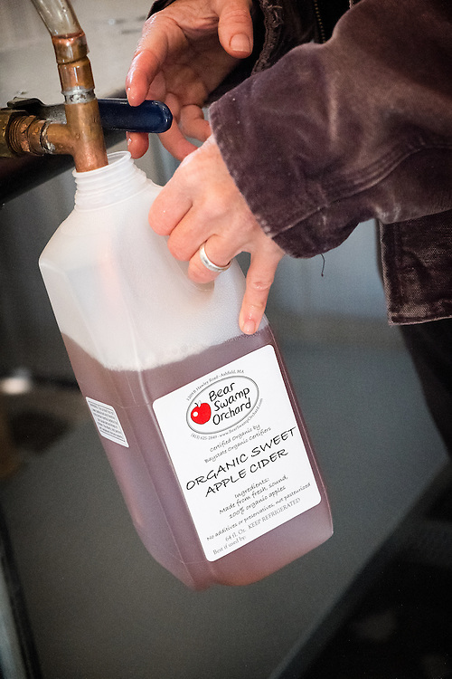 Jennifer Williams, co-owner at Bear Swamp Orchard & Cidery, fills cider jugs to be sold at the cidery.
