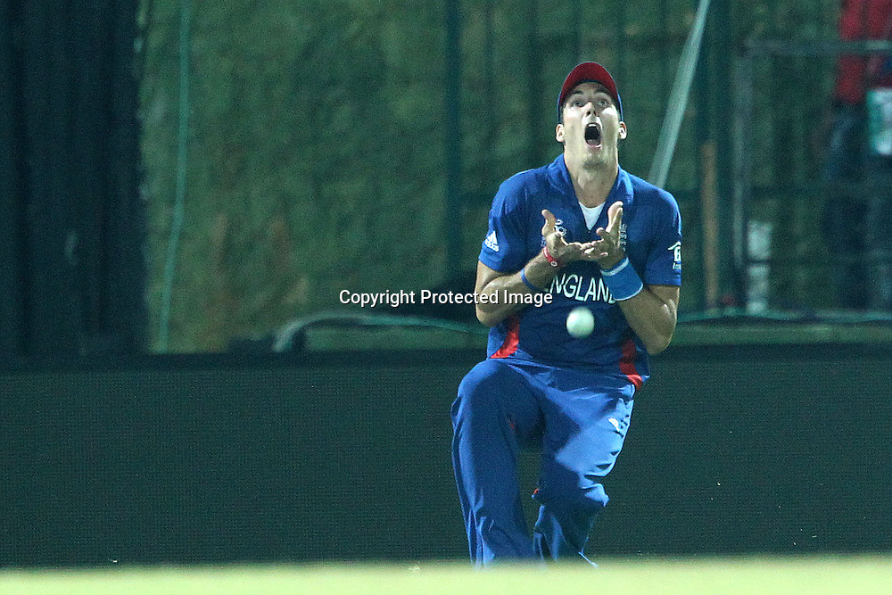 Steven Finn of England  drops the catch for the wicket of Chris Gayle of The West Indies during the ICC World Twenty20 Super 8s match between England and The West Indies held at the  Pallekele Stadium in Kandy, Sri Lanka on the 27th September 2012<br /> <br /> Photo by Ron Gaunt/SPORTZPICS