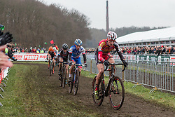 Tim Merlier (BEL) of Sunweb - Napoleon Games Cycling Team, Men Elite, Cyclo-cross World Cup Hoogerheide, The Netherlands, 25 January 2015, Photo by Pim Nijland / PelotonPhotos.com