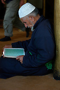 India, Ladakh region state of Jammu and Kashmir, Leh Imperial Palace, Muslims at prayer reading the scriptures