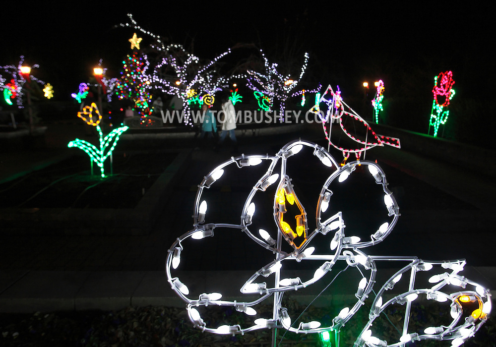Hamptonburgh, New York - People walk through the Holiday Lights in Bloom display after  the tree lighting ceremony in the Orange County Arboretum at Thomas Bull Memorial Park on Dec. 1, 2011. The Holiday Lights in Bloom display features beautiful, garden-themed lights in the forms of flowers, animals, and insects.