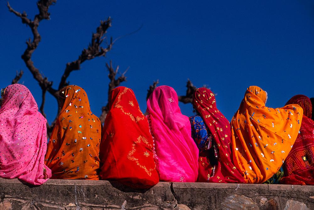 Rajasthani women wearing multi colored saris, Pushkar Camel Fair, Pushkar, Rajasthan, India