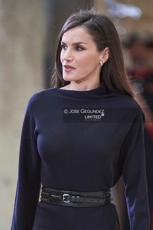 Queen Letizia of Spain attends the Delivery of the National Research Awards 2019 at Palacio Real de El Pardo on February 17, 2020 in Madrid, Spain